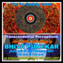 Transcendental Perceptions